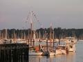 festival dock dusk